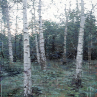 Woods, dusk, 2019  60 x 60 cm  Oil on panel
