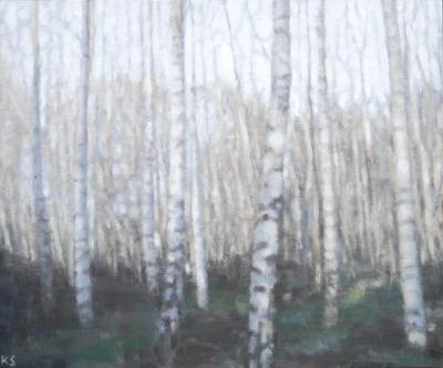 Birch 13 (spring), 2020  25 x 30cm  Oil on panel
