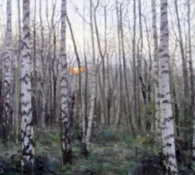Birch 15 (spring), 2020  25 x 28cm  Oil on panel