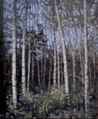 Birch 18 (spring), 2020  30 x 25cm  Oil on panel